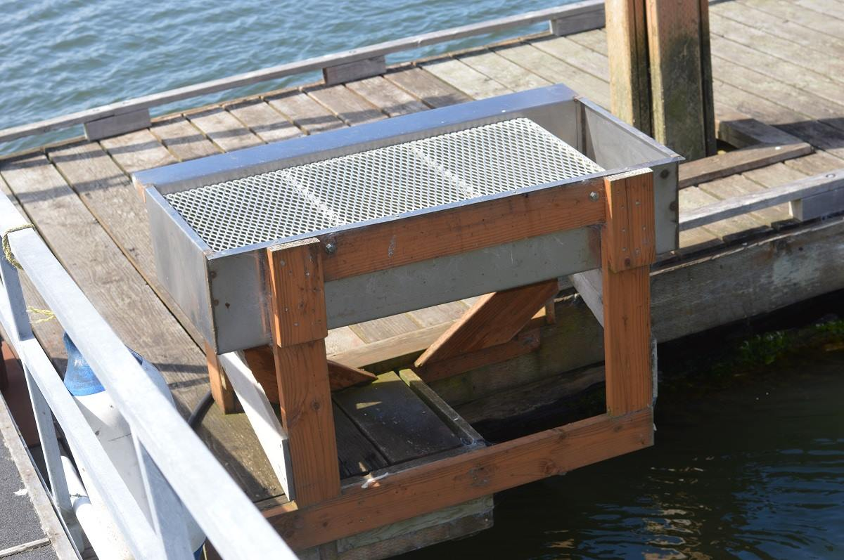 Wheeler on the bay has a fish cleaning station wheeler for Dock fish cleaning station